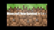 Minecraft New Survival # 1 #