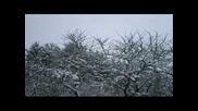 Coldworld ~ Winterreise