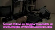 Dog Treadmill For Sale