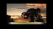 Вълшебни Изгреви и Залези с Музиката на Шри Чинмой