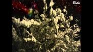 Hark ! The Herald Angels sing / Adventslied / Weihnachtsmusik / Weihnachtslieder
