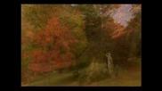 Багрите на есента - Gymnopedie No.1