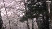 The first Noel / Adventslied / Weihnachtsmusik / Weihnachtslieder / Christmas Music