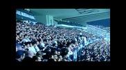 Фенове верни до гроб пеят за Besiktas