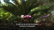 Les jardins de Victoria - Colombie-britannique, Canada