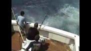 Рибарите хванаха черен марлин изяден от акула