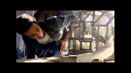 Revolucia Z - Az iskam (official video 2013)
