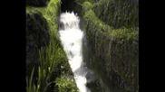 Бали Островът на боговете