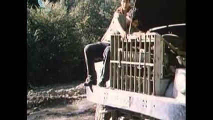 Стената (1984) с участието на Иван Иванов