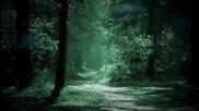 Александр Малинин - Ночь светла