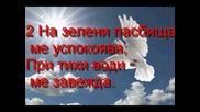 Илия Панов - Излей