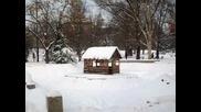 Тихо се сипе първия сняг