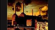 """sheep"" by Pink Floyd"