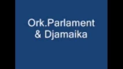 Djamaika 2011 New