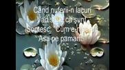 Alfred Mosoiu - Rugaciunea florilor
