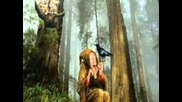 Bosque Magico ...enya-caribbean Blue