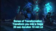 World of Warcraft Transformation Items