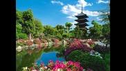 Япония. Край цветущей сакуры
