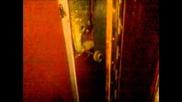 Abandoned Hotel Ii Dead Elevator