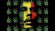 Gondwana - reggae is coming