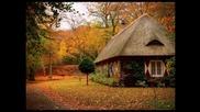 Най-красивите къщи в гората