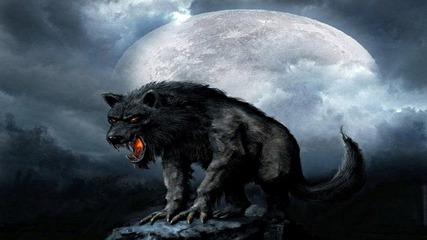 Секретные территории: Оборотни - Код зверя