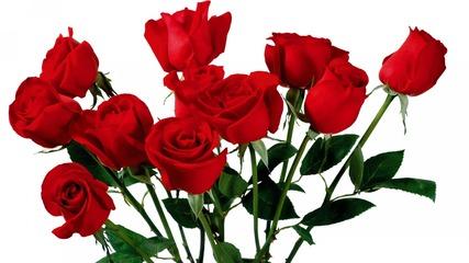 Happy Birthday to You - Честит Рожден Ден - Цветя за теб