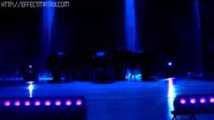 (official video) Grupo Camaleones / Pee we - tan feliz