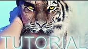 Окото на тигърът / Фотошоп урок/