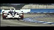 2013 12 Hours of Sebring - Muscle Milk Pickett Racing