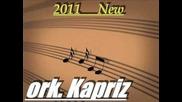 ork.kapriz - dana kuchek 2011 - 2012 - 2013 ( spec za wsichki was ot Tenay mix )