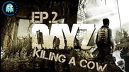 Killing Cows And Finding Friendly People - Dayz Gameplay Ep.2