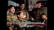 Moldoveanca -smuglyanka - V boy idut odni stariki - Ucraina 1