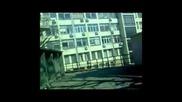 Mega Vlog- Blackwave and Viper751