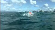 Плуване в открити води. Съвети и техники: щрих механика за грубо плуване