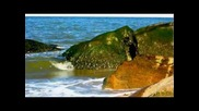 Медвин Гудал - Свободен дух