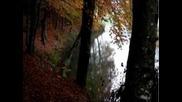 Emozioni d'autunno al Lago di Roncone