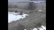 Вижте как спасяват животни с лодка при наводнението в Свиленград