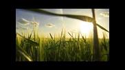 Matt Karrey & John Calm - Revival (soundlift Remix)