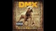 Dmx-the Rain