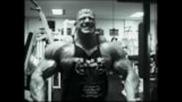 Bodybuilding - Sport of Gods