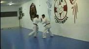 Karate Kyokushinkai: Dureza tradicional