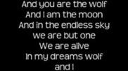 Oh Land - Wolf & I Lyrics On Screen