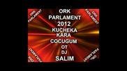 Ork Parlament 2012 kucheka Kara Cocugum ot Dj Salim