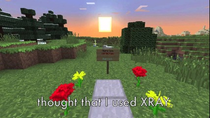 """you Thought I Used Xray"" A Minecraft Song Parody of Katy Perry's ""the One That Got Away"