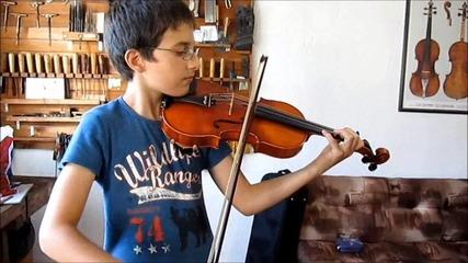 Красива цигулка за млад талантлив цигулар