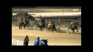 Секс по време на конно надбягване - Смях ;дд