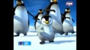 muzica distractiva - Pinguinul