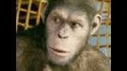 Rise of the Planet of the Apes Movie Trailer 3 Official (hd)
