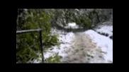Паднали дървета във Велико Търново